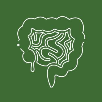 Швидкі тести для діагностики гастроентерологічних захворювань